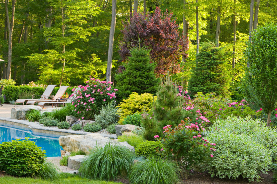 Simple Landscape Ideas