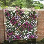 Garden fence ideas with flowers
